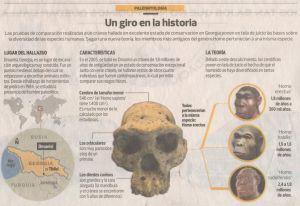 Nueva teoría sugiere que los ancestros humanos constituían una sola especie Gráfica